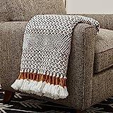 Amazon Brand – Rivet Modern Hand-Woven Stripe Fringe Throw Blanket, 50' x 60', Grey and White with Mustard Yellow
