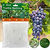 Monstake Plant Trellis Netting for Climbing Plant, Elegant Heavy-Duty Polyester Plant Support Vine Climbing Square Mesh Net for Fruits and Vegetables, 5×15FT 1 Pack