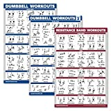 Palace Learning 3 Pack: Dumbbell Workouts Posters Volume 1 & 2 + Resistance Bands Exercises - Set of 3 Workout Charts (Laminated, 18' x 27')