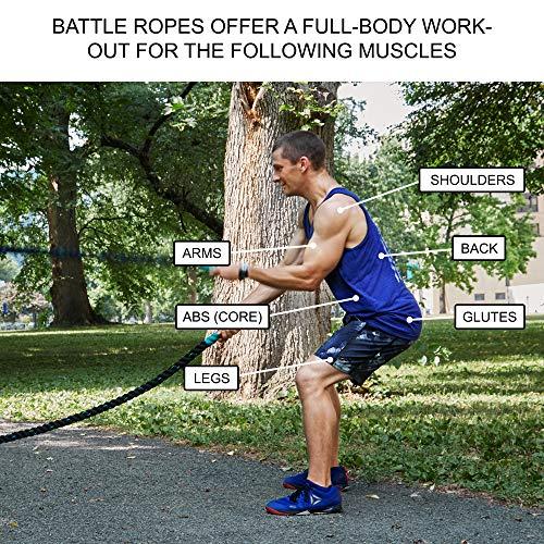 61QbgGBuWFL - Home Fitness Guru