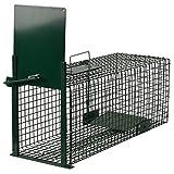 Moorland Piège de Capture - Cage - pour Animaux : Lapin, Rat - Simple à...