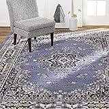 Home Dynamix Sakarya Area Rugs, 5'2'x7'4' Rectangle, Blue
