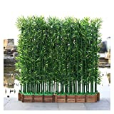 ADosdnn Las Plantas Artificiales 100/150 / 180cm Falsos Planta de bamb ajardinar del Hotel Decoracin de Interior Plantas de Faux Plantas Bonsai (Color : 10pcs 150cm no Pot)