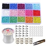 Pony Glass Seed Beads Small Spacer Beads Assorted Kit with Organizer Box...
