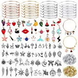 300Pcs Expandable Bangle Bracelets with Charms, Flasoo 20Pcs Bangles for Jewelry Making with 30Pcs Jewelry Charms, 50Pcs Charm Pendants, 200Pcs Jump Rings for DIY Craft