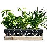 Jardin Intérieur - par Viridescent - Jardinière en bois pour rebord de fenêtre pour la cuisine. Le kit contient tout ce dont vous avez besoin pour faire pousser vos propres herbes fraîches. Idée parfaite de cadeau