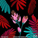Candles into Chandeliers, Vol. 2 [Explicit]
