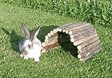 Kerbl Petits Animaux Passerelle Bois 50 cm