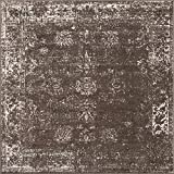 Unique Loom Sofia Traditional Area Rug, 6' 0 x 6' 0, Brown
