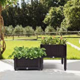 Catrimown Set of 2 Raised Garden Bed Kits, Plastic Elevated Garden beds with Brackets for Flowers Vegetables, All Weather Planter Box Container for Backyard Garden Patio (2)