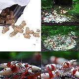 Dabixx - Nourriture pour crevettes et escargots d'aquarium et...
