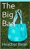 The Big Bag (Bean Bag Designs Book 10)