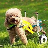 Adjustable Dog Pet Wheelchair, Hind Legs Rehabilitation, 7 Sizes (0-110lbs), Dog Cart,Wheels (1.XXS Size: Hip Height: 6.3'-9.5', Width:3.5'-6')