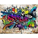 Papier peint intissé Mur de pierre Graffiti 352 x 250 cm - Tapisserie...