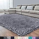 RUGTUDER Dark Grey Soft Area Rug for Bedroom,4x6,Fluffy Rugs,Shag Carpet for Living Room,Fuzzy Rug...