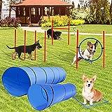 LaSoGi Equipo de entrenamiento de agilidad para mascotas para interiores y exteriores, kit de entrenamiento de agilidad para perros, juego de túnel de 1,8 m y 3 m, con anillo de salto de túnel