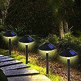 ZEVEZ Solar Lights...image