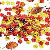 4 Paquets Confettis de Feuille d'Érable Confettis de Fête de Thanksgiving...