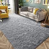 HQAYW Modern Fluffy Area Rug, Shaggy Rugs for Bedroom Living Room Ultra Soft Shag Fur Carpets for Kids Girls Nursery Plush Fuzzy Rug Cute Home Decor Rug, 4' x 6', Grey