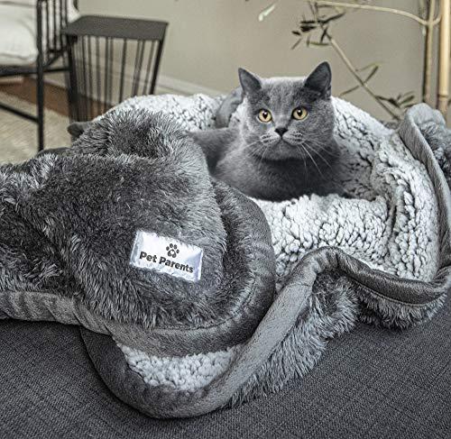 Pet Parents Pawtect Blanket, Premium Waterproof Cat & Dog Blanket with WickQuick & Sherpup Technology, Superb Puppy Blanket, Waterproof Dog Blanket, Blankets for Dogs, Cat Blanket Slate 24x32