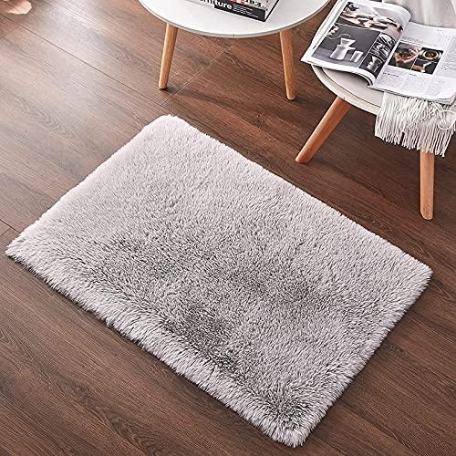 RiyaNed Tappeti Morbido soffice, Tappeti Decorativi per Animali Domestici Camera da letto, soggiorno, divano, cameretta dei bambini (grigio, 60 x 90 cm)