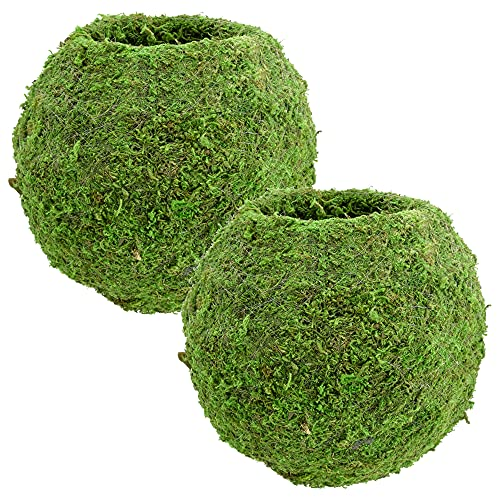 "Arcadia Garden Products KO03 Kokedama-8.5 x 7.5"", Set of 2, Green"