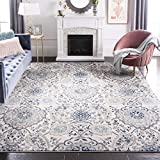 Safavieh Madison Collection MAD600C Bohemian Chic Glam Paisley Area Rug, 9' x 12', Cream/Light Grey
