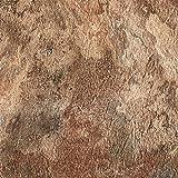 Achim Home Furnishings MJVT180410 Majestic Vinyl Floor Tile, 18 x 18 inches, Rustic Copper Slate, 10-Pack