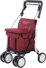 Andador-silla de ruedas Mobiclinic Picasso.