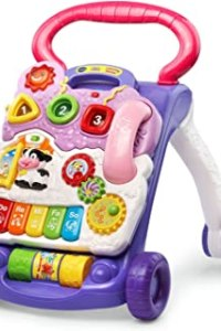 Baby Walker For Carpets of January 2021