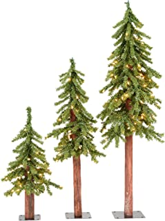 Vickerman Natural Alpine Tree Set lit by 185 Clear lights, with three trees sized..