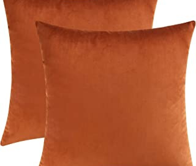 Mixhug Set Of 2 Cozy Velvet Square Decorative Throw Pillow Covers For Couch And Bed