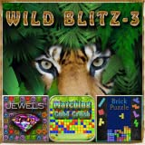 Wild Blitz 3 Games - Brick Puzzle, Jewel Play, Matching Cube Crush