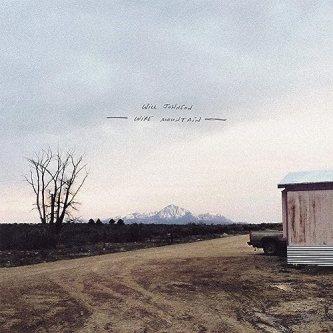 """Resultado de imagen de Will Johnson - Wire Mountain"""""""