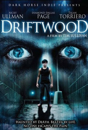 Driftwood: O Reformatório Dublado Online