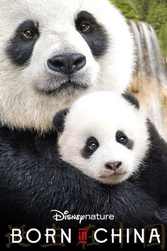 Nascidos na China Legendado Online
