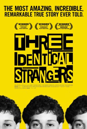 Three Identical Strangers Legendado Online