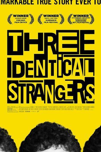 Três Estranhos Idênticos Dublado Online