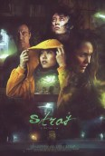 Image result for Stray 2019 poster