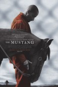 Image result for The Mustang