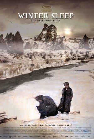 Sono de Inverno Legendado Online