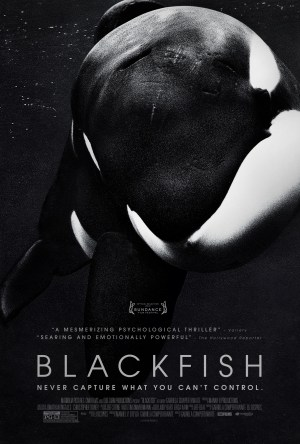 Blackfish – Fúria Animal Dublado Online