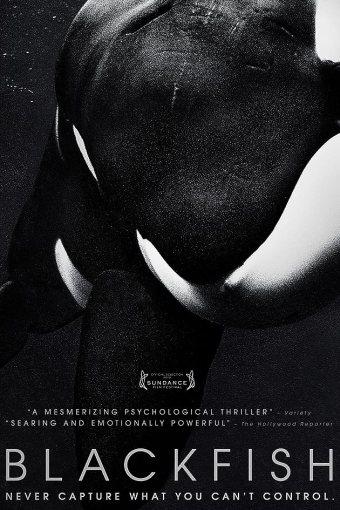 Blackfish – Fúria Animal Dublado Online