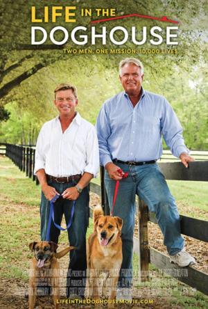 A Casa é dos Cachorros Legendado Online