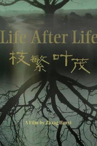 A Vida Após a Vida Legendado Online