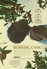 Download Burning Cane