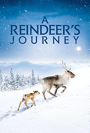 Ailo's Journey Legendado Online