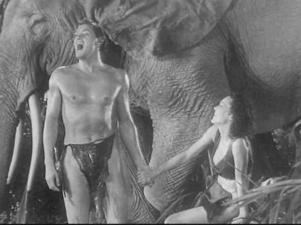 Image result for Tarzan and his Mate