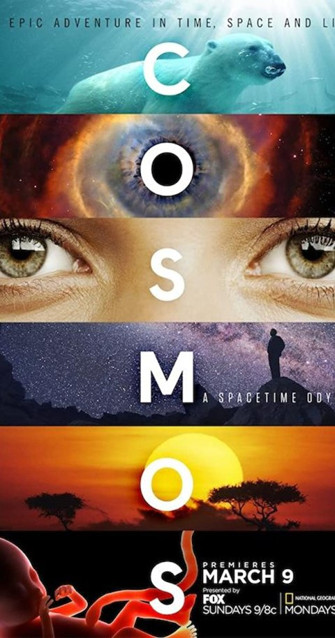 Cosmos: A Spacetime Odyssey (Season 1) 720p {Hindi Dubbed} WeB-HD [400MB