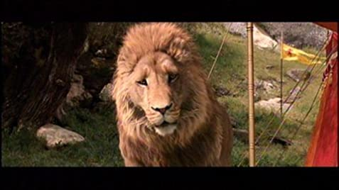 The Chronicles Of Narnia The Lion The Witch And The Wardrobe 2005 Imdb
